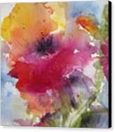 Iceland Poppy Canvas Print by Anne Duke