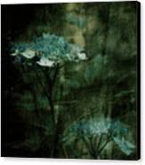 In The Still Of The Night Canvas Print by Bonnie Bruno