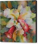 Into The Light Canvas Print by Tara Moorman