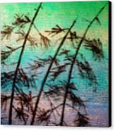 Into The Wind Canvas Print by Rick Silas