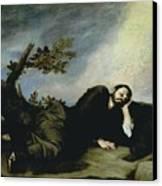 Jacobs Dream Canvas Print by Jusepe de Ribera
