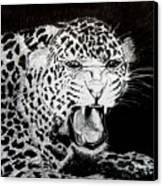 Jaquar II Canvas Print by Stan Hamilton
