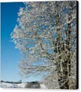 Jenne Farm Winter In Vermont Canvas Print by Edward Fielding