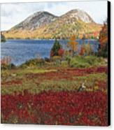 Jordan Pond And The Bubbles Canvas Print by George Oze