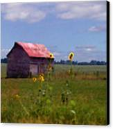 Kansas Landscape Canvas Print by Steve Karol