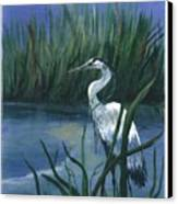 Keeper Of The Pond II Canvas Print by Shirley Lawing