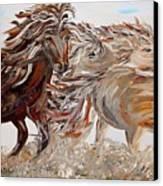 Kicking Up Dust Canvas Print by Eloise Schneider