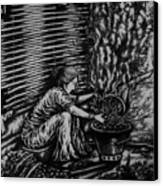Killing Softly  Canvas Print by Pralhad Gurung