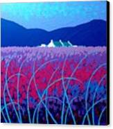 Lavender Scape Canvas Print by John  Nolan
