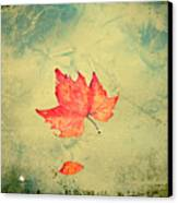 Leaf Upon The Water Canvas Print by Bill Cannon