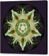 Leafy Mandala Canvas Print by Rene Crystal