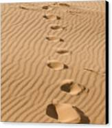Leave Only Footprints Canvas Print by Heather Applegate