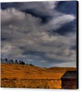 Leaving The Shed Canvas Print by David Patterson
