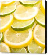 Lemons And Limes Canvas Print by James BO  Insogna