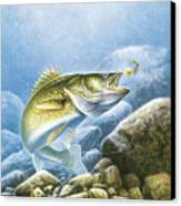 Lindy Walleye Canvas Print by JQ Licensing