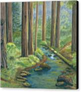 Little Stream In The Woods Canvas Print by Vidyut Singhal