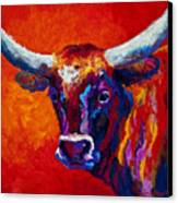 Longhorn Steer Canvas Print by Marion Rose