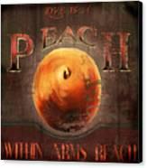 Love Is A Peach Canvas Print by Joel Payne