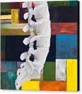 Lumbar Spine Canvas Print by Sara Young