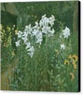 Madonna Lilies In A Garden Canvas Print by Walter Crane