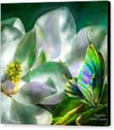 Magnolia Canvas Print by Carol Cavalaris
