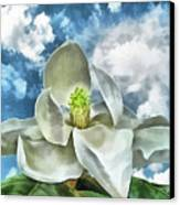 Magnolia Dreams Canvas Print by Wendy J St Christopher