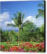 Makena Beach Golf Course Canvas Print by Peter French - Printscapes