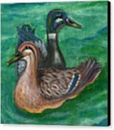 Mallard Ducks Canvas Print by Anna Folkartanna Maciejewska-Dyba