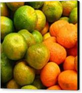 Mandarins And Tangerines Canvas Print by Yali Shi