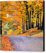 Maples Of Rupert Vermont Canvas Print by Thomas Schoeller