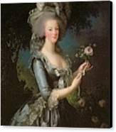 Marie Antoinette Canvas Print by Elisabeth Louise Vigee Lebrun