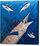 Marlin And Ahi Canvas Print by Carol Lynne