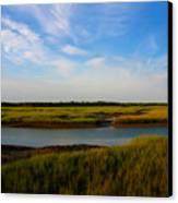 Marshland Charleston South Carolina Canvas Print by Susanne Van Hulst