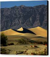 Mesquite Flat Dunes - Death Valley California Canvas Print by Christine Till