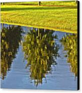 Mirroring Trees Canvas Print by Heiko Koehrer-Wagner