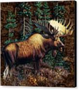 Moose Vignette Canvas Print by JQ Licensing