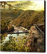 Morning Sunshine Canvas Print by Lj Lambert