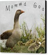 Mother Goose Canvas Print by Juli Scalzi