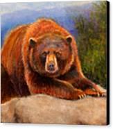 Mountain Bear Canvas Print by Susan Jenkins