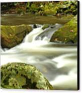 Mountain Stream 3 Canvas Print by William Jones