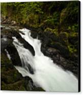 Mountain Stream Canvas Print by Mike Reid