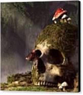 Mouse In A Skull Canvas Print by Daniel Eskridge