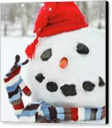 Mr. Snowman Canvas Print by Sandra Cunningham