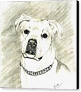 My Bella Canvas Print by Joette Snyder