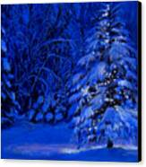 Natural Christmas Tree Canvas Print by Susan Jenkins