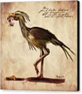 Never Bird Canvas Print by Mandem