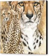 Nimble Canvas Print by Barbara Keith