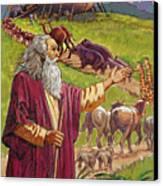 Noah's Ark Canvas Print by Valer Ian