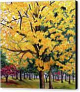 North Savannah Poui Canvas Print by Karin  Dawn Kelshall- Best