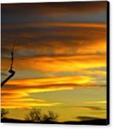 November Sunset Canvas Print by James BO  Insogna